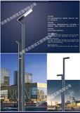 LED庭院灯5